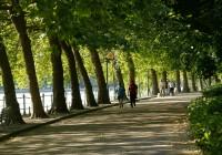 Les parcs Napoléon III